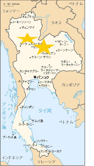 黒しょうが(黒生姜)タイ北部